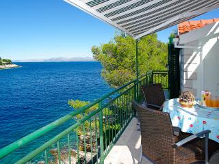 Charming seaside house - Vela Luka vacation rentals