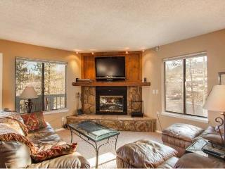 Bullwinkle's Folly - 2BD/2BA w/ mountain views! - Silverthorne vacation rentals