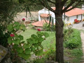 Spacious Rustic cottage in beautiful gardens - Sao Martinho do Porto vacation rentals