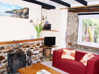 Perfect 3 bedroom Mount Hawke Cottage with Television - Mount Hawke vacation rentals