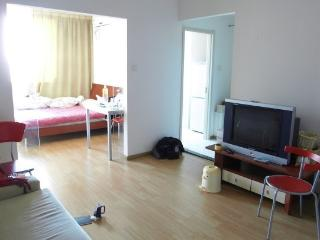 Wudaokou 1 br apartment. Blcu Tsinghua,Peking. - Beijing Region vacation rentals