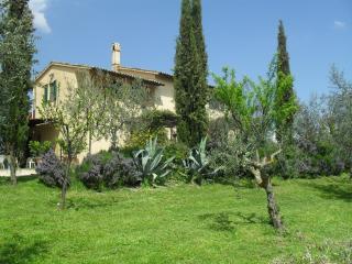 Casa Olivo C - Bevagna vacation rentals