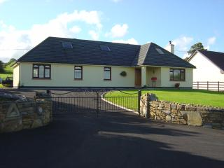 Cozy 3 bedroom Castlebar House with Television - Castlebar vacation rentals