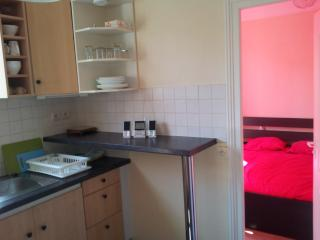 1 bedroom Apartment with Internet Access in Saint-Maur-des-Fossés - Saint-Maur-des-Fossés vacation rentals