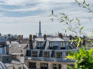 Montorgueil Rooftop Terrace - Paris vacation rentals