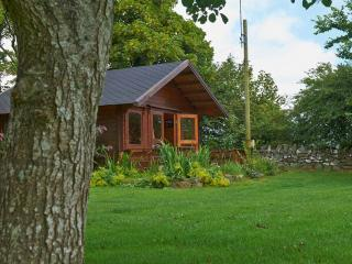 Wonderful 1 bedroom Cabin in Llanddeusant - Llanddeusant vacation rentals