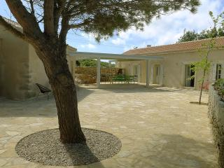 Nice House with Internet Access and A/C - Aroniadika vacation rentals