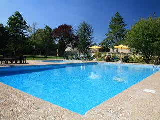 Hercules Delightful large 3 bedroom gite sleeps 9. Near La Rochelle - Loulay vacation rentals
