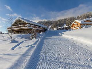 Alpine Sun Chalet - Sun Peaks Resort - Sun Peaks vacation rentals