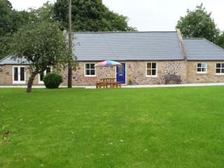 The Smithy & River Cottage 6 Bedrooms, sleeps 14 - Kelso vacation rentals