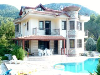 Fig Tree Villa, Uzumlu sleeps 8, private pool - Yesiluzumlu vacation rentals