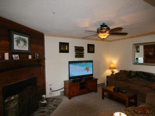 Best Midweek Specials on the Mountain! New Remodel - Snowshoe vacation rentals