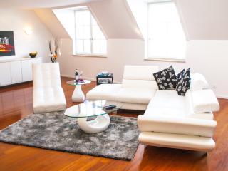 PENTHOUSE Suite next to OPERA - Vienna vacation rentals