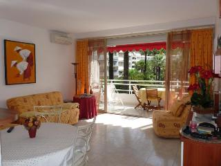 Montfleury 1 Bedroom Apartment with a Terrace, Cannes - Cannes vacation rentals