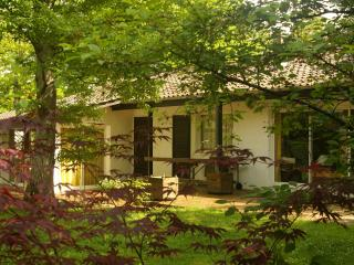 4 bedroom Cottage with Television in Savigny Sur Clairis - Savigny Sur Clairis vacation rentals