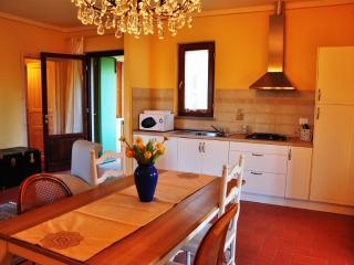 appartamento di charme Castagneto Carducci - Castagneto Carducci vacation rentals