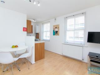 City Centre - Oxford Street Two Bedroom Flat - London vacation rentals