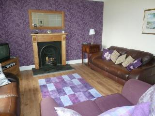 Comfortable Cottage with Internet Access and Television - Isle of Lewis vacation rentals