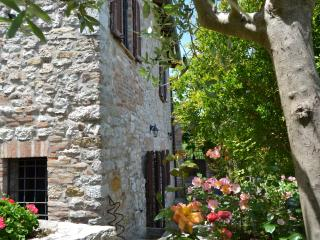 Ancient rock house with garden,in the center - Corciano vacation rentals