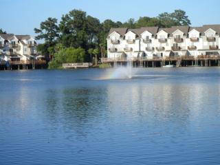 Carolina Waterfront Rental in great location - North Charleston vacation rentals