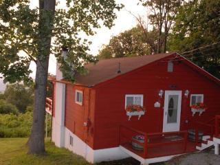 Mt TOP CABIN IN VIRGINIA WINE COUNTRY - Front Royal vacation rentals
