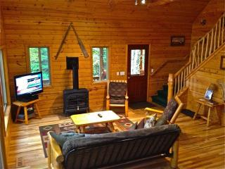Open All Year*PontoonBoat*WaterTrampoline*Gameroom - Northwest Michigan vacation rentals