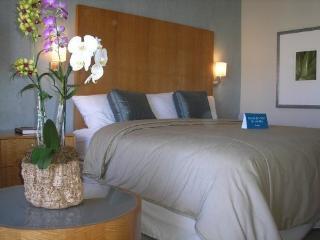 PARADISE VACATION IN WAIKIKI - Honolulu vacation rentals
