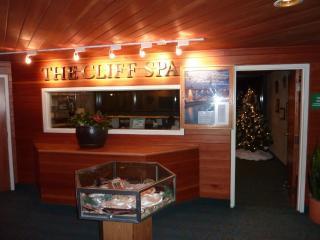 Snowbird Cliff club weekly Rentals - Snowbird vacation rentals