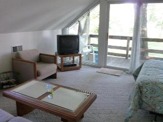 Tree House Chalet on Koontz Lake, Indiana - Walkerton vacation rentals