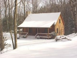 Log Cabin on Grandfather Mountain - Banner Elk vacation rentals
