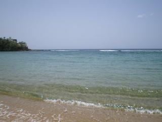 Beach Villa - Dorado vacation rentals
