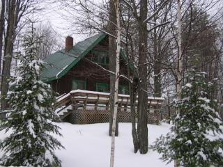 At Home in Maine's Ski Country!! - Western Maine vacation rentals