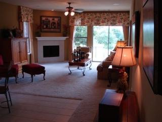 Brand New Arlington home, w/ Pools,near six flags - Texas Prairies & Lakes vacation rentals