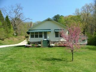 Chattanooga Countryside Cottage-beauty,convenience - Dunlap vacation rentals