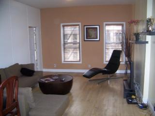 Manhattan NY Upper E.Side 3 bdrm/2 bth Mth Special - Manhattan vacation rentals