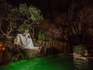 The Enchanted Manor- Tropical Paradise - North Hollywood vacation rentals