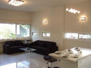 Luxury apartment in Tel Aviv 2 minute's walk beach - Tel Aviv vacation rentals
