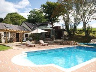 Pantymeillion Cottages with spa options - Llanelli vacation rentals