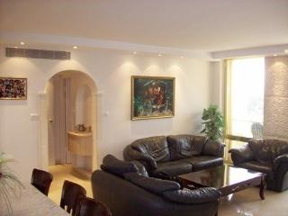 3 bedrooms LUXURY rental!!! In Mamila\city center - Jerusalem vacation rentals