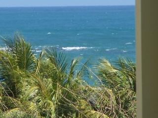 Beach Penthouse free night w/all fees included - Loiza vacation rentals