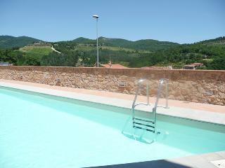Beautiful 1 bedroom Gaiole in Chianti Apartment with Internet Access - Gaiole in Chianti vacation rentals