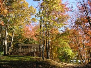 VACATION IN THE MOUNTAINS - Hot Springs vacation rentals