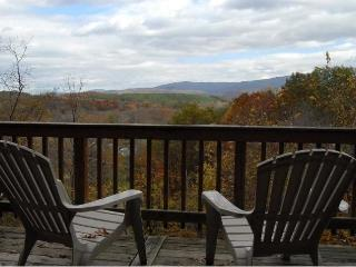 Shenandoah Valley Escape w/Hot Tub *Midweek Special* - Fort Valley vacation rentals