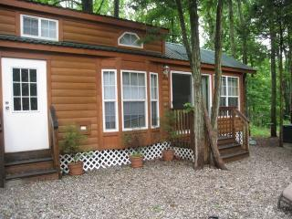Luxury Lodge near Six Flags Jackson NJ - Hightstown vacation rentals