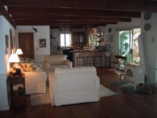 Spacious Family Vacation Home near Pleasant Bay - Orleans vacation rentals