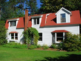 Lakeside Retreat - Woodstock vacation rentals