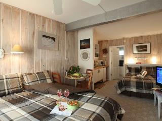 Last Minute Deal!  Condo Apt.at Ocean - Hamptons - Amagansett vacation rentals