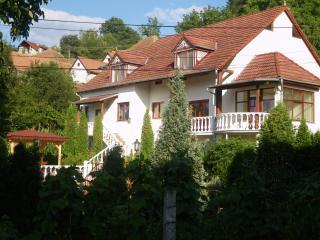 Sighisoara ,vila in Sighisoara - Sighisoara vacation rentals