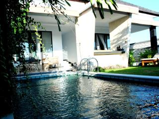 NEW Villa 2bd CANGGU/Echo Beach - Canggu vacation rentals