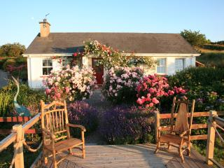 Beautiful 3 bedroom Cottage in Ballydehob with Deck - Ballydehob vacation rentals